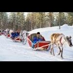 Aurora Borealis na Finlândia - Rovaniemi 7 dias/6 noites 9