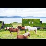 Aventura nas Ilhas de Ferou - 6 dias/5 noites    Voar e dirigir 22