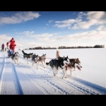 Aurora Borealis na Finlândia - Rovaniemi 7 dias/6 noites 22
