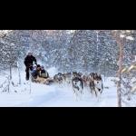 Lapland Experience of Finland in Kakslauttanen 5 days/4 nights 21