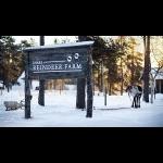 Aurora Boreal no Inari na Finlândia 4 dias/3 noites 13