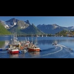 North Cape tour Bodö-Alta  For groups only - 8 days/7 nights  51