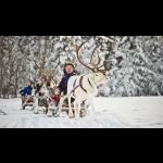 The Northern Lights in Finland - Kakslauttanen 3 days/2 nights 15