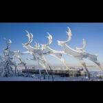 Aurora Borealis na Finlândia - Rovaniemi 7 dias/6 noites 45