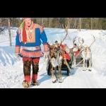 Aurora Borealis na Finlândia - Rovaniemi 7 dias/6 noites 11