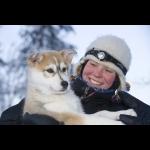 Aurora Borealis na Finlândia - Rovaniemi 7 dias/6 noites 29