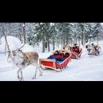 Aurora Borealis na Finlândia - Rovaniemi 7 dias/6 noites 5