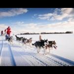 Svalbard, Longyearbyen and Oslo 7 days/6 nights 27