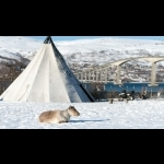 Northern Lights in Norway -  Tromso 3 days/2 nights 17