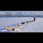Arctic Northern Lights In Tromsö and Alta - Norway 5 days/4 nights 10