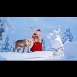 Aurora Borealis na Finlândia - Rovaniemi 7 dias/6 noites 3